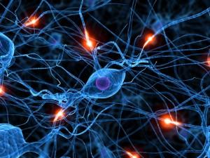 Stem Cells for Parkinsons