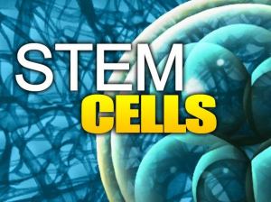 Stem Cells ALS